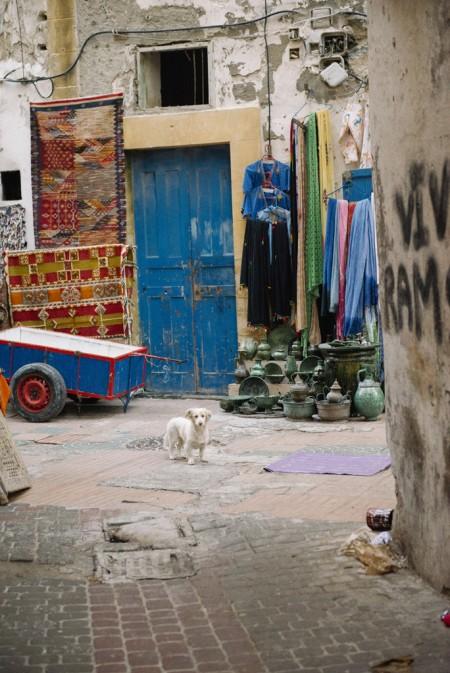 2015 WEB Morocco - 353
